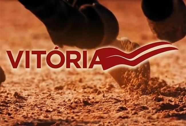 vitoria2014_logo