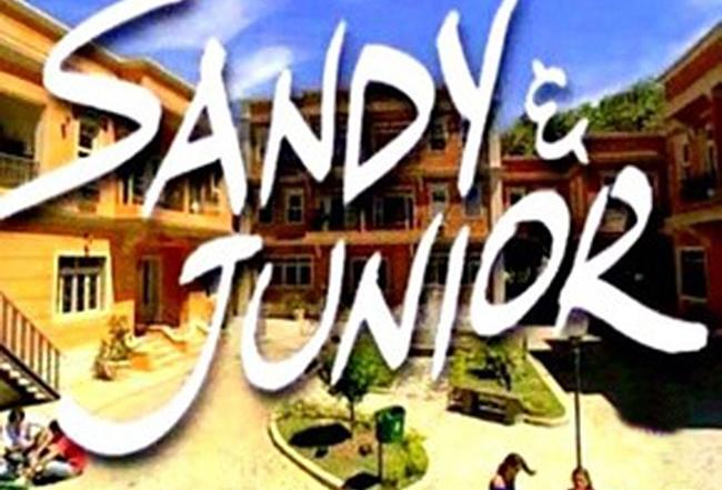 sandyejr_logo